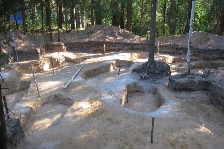 Древнюю женщину в перстнях обнаружили на кладбище в Костромской области