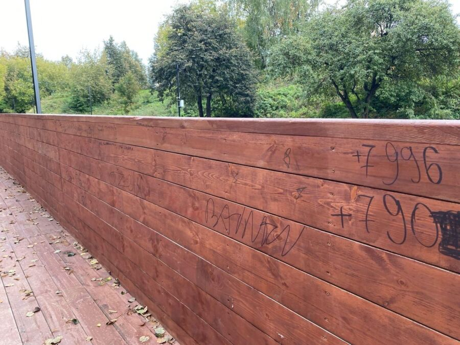 Не успели сделать — уже уродуют: новый парк в Костроме атакуют вандалы