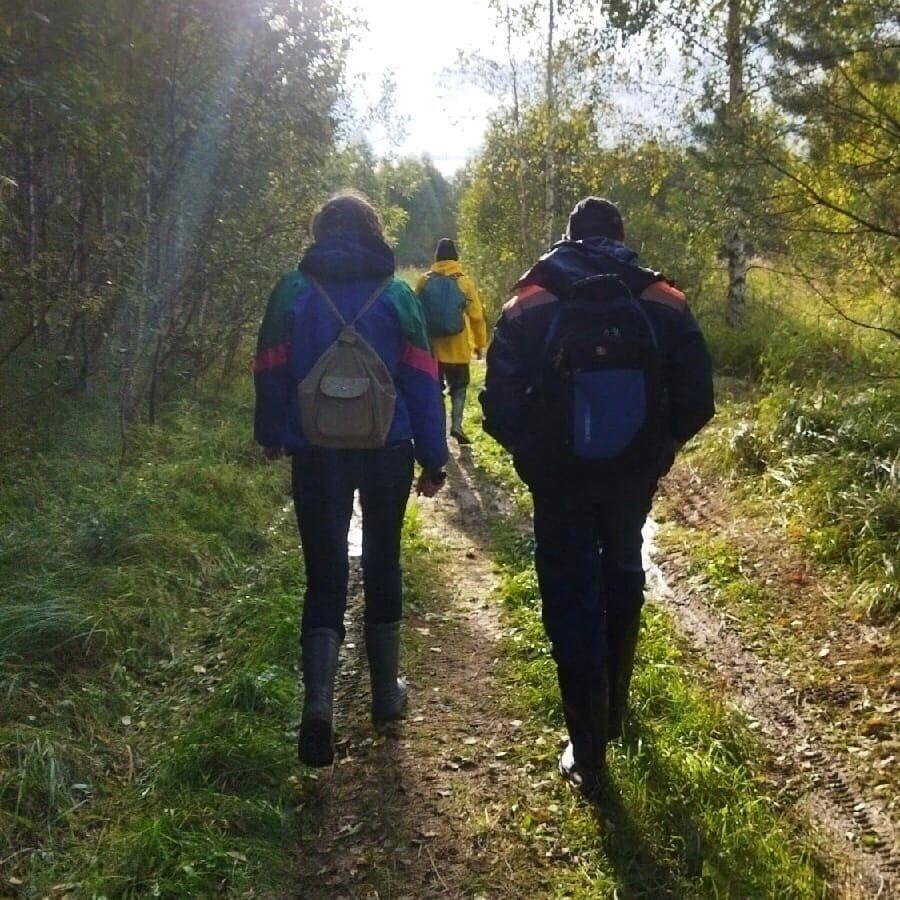 Уже двух человек нашли мертвыми в лесах под Костромой